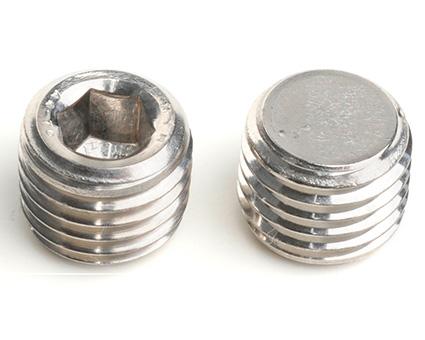 Stainless Steel Socket Pipe Plugs